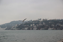 Bosphorus Stockbild
