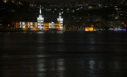 Bosphorus Royaltyfri Bild