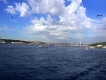 Bosphorus-Brückenfliegenseemöwen und -Dampfschiffe Stockfoto