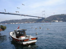 Bosphorus bridge. With boat and seagulls at a sunny day looking towards the Asian side of Istanbul royalty free stock images