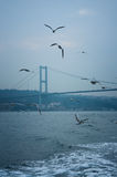 Bosphorus Bridge Royalty Free Stock Photography