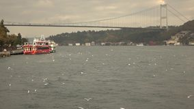 Bosphorus Bridge Turkey Istanbul. View of the Bosphorus Bridge, the embankment with pleasure ships, the city and seagulls flying over the sea Turkey Istanbul stock video