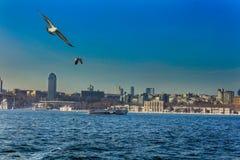 Bosphorus Dolmabahce宫殿伊斯坦布尔 图库摄影