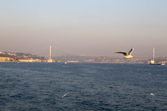 The Bosphorus, Istanbul Royalty Free Stock Photos