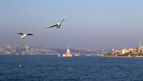 The Bosphorus, Istanbul Stock Photography