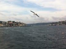 Bosphorus kanał Obrazy Royalty Free