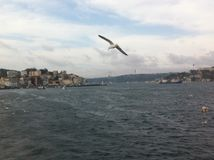 Bosphorus-Kanal Lizenzfreie Stockbilder