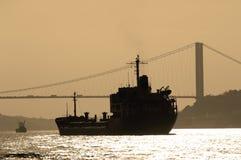 bosporus indyk Istanbul Zdjęcia Stock