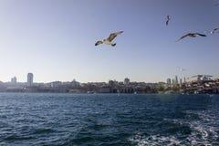 Bosporus Istambul Foto de Stock Royalty Free