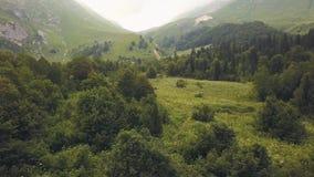 Bosque aéreo de la montaña del paisaje en valle hermoso Pico de montaña nublado metrajes