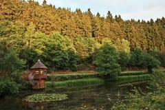 Bosque alemán Imagen de archivo libre de regalías