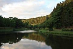 Bosque alemán Fotografía de archivo
