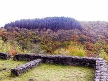 Bosque alrededor del castillo foto de archivo