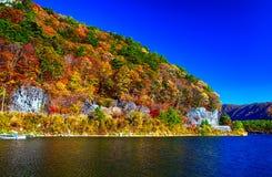 Bosque anaranjado y rojo hermoso del otoño Fotos de archivo libres de regalías