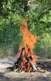 Bosque ardiente del fuego del campo Foto de archivo