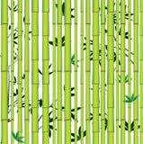 Bosque asiático inconsútil de bambú ilustración del vector