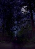 Bosque asustadizo de Halloween Foto de archivo libre de regalías
