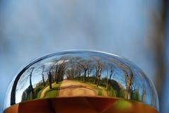 Bosque atrapado burbuja en metal fotografía de archivo libre de regalías