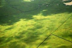 Bosque austríaco y lago grandes vistos de un avión Imagenes de archivo