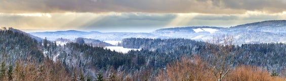 Bosque bávaro Imagenes de archivo