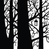 Bosque blanco y negro Foto de archivo