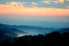 Bosque brumoso en la salida del sol fotografía de archivo libre de regalías