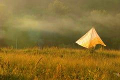 Bosque, campo, niebla de la mañana y toldo amarillo Fotos de archivo libres de regalías