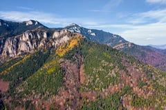 Bosque coloreado hermoso en una montaña rocosa imagen de archivo libre de regalías