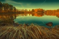 Bosque colorido del otoño en el lago Colores del vintage Imagen de archivo libre de regalías