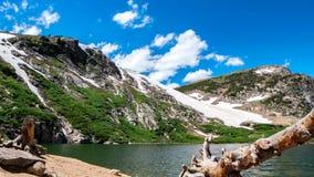 Bosque colorido en Rocky Mountain National Park, Colorado, los E.E.U.U. fotografía de archivo