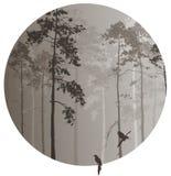 Bosque conífero stock de ilustración
