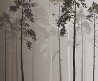 Bosque conífero ilustración del vector