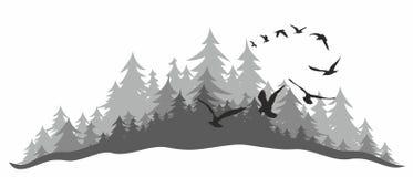 Bosque conífero con los pájaros libre illustration