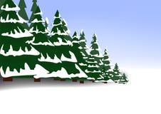 Bosque conífero del invierno ilustración del vector