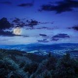 Bosque conífero en una cuesta de montaña en la noche Imagenes de archivo