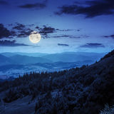 Bosque conífero en una cuesta de montaña en la noche fotos de archivo libres de regalías