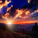 Bosque conífero en una cuesta de montaña escarpada en la puesta del sol imagenes de archivo