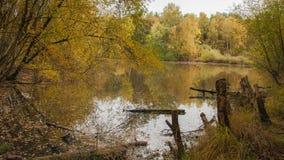 Bosque con el lago y el cielo Fotografía de archivo