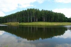 Bosque con un área que camina en la orilla del lago Fotografía de archivo