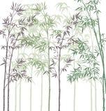 Bosque de bambú ilustración del vector