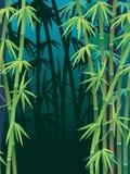 Bosque de bambú Imagen de archivo