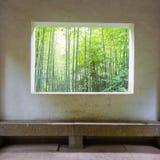 Bosque de bambú fotografía de archivo