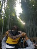 Bosque de bambu, Kyoto imagens de stock