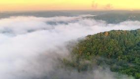 Bosque de establecimiento de niebla de Pennsylvania del tiro de la mañana aérea almacen de video