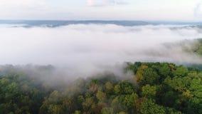 Bosque de establecimiento de niebla de Pennsylvania del tiro de la mañana aérea metrajes