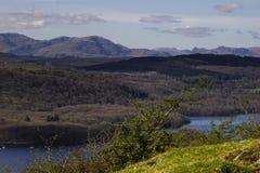 Bosque de Grizedale - distrito inglés del lago Imagenes de archivo