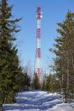 Bosque de la comunicación de la torre de las telecomunicaciones Foto de archivo libre de regalías