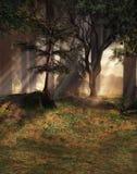 Bosque de la fantasía ilustración del vector