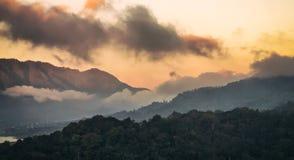 Bosque de la montaña de la niebla y de la nube foto de archivo libre de regalías