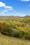Bosque de la montaña en el otoño Fotos de archivo